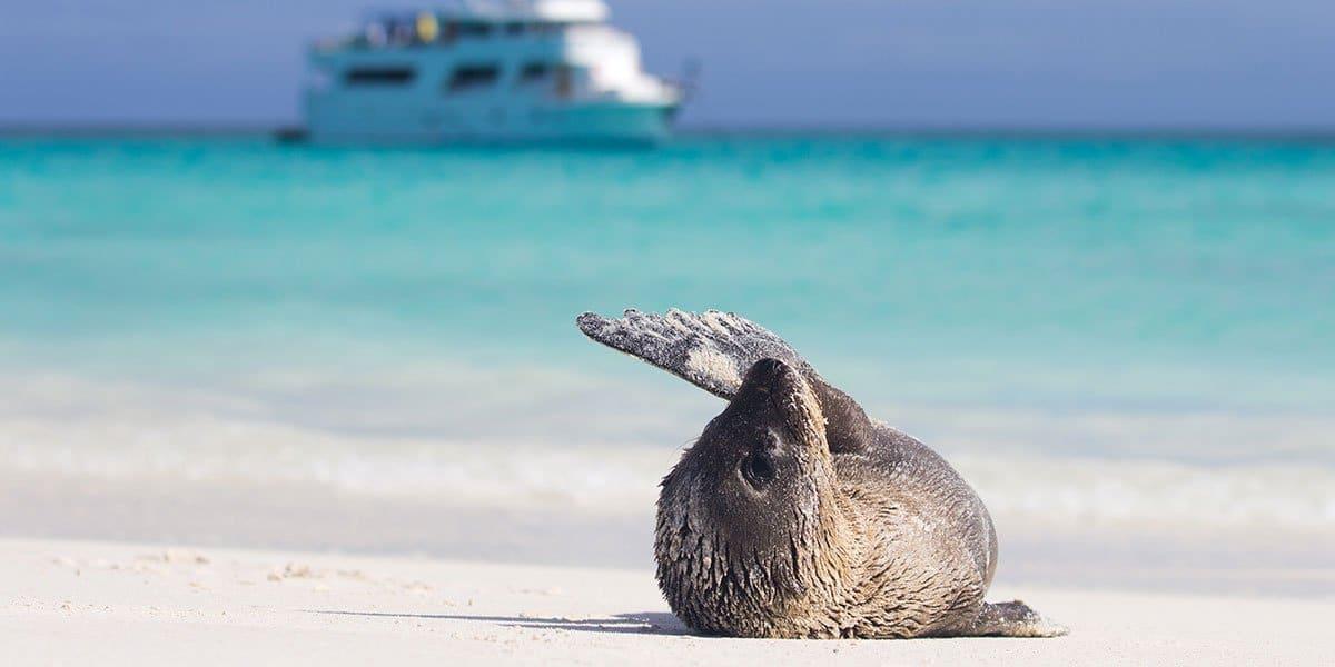 Galapagosöarna