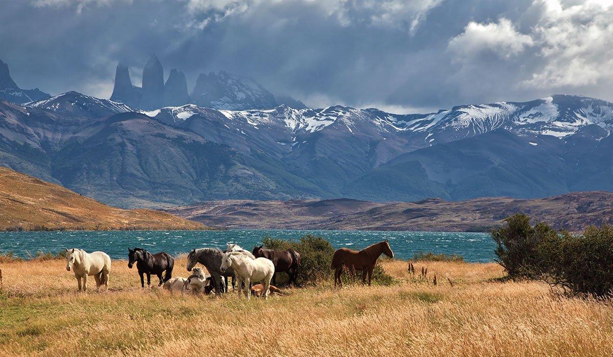 Chile Patagonien