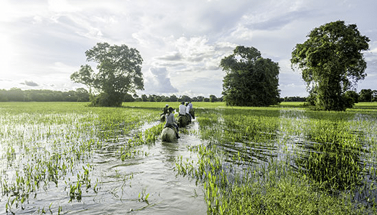 Ridsafari i Pantanal, Brasilien