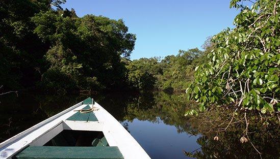 Utflykt från Amazon Lodge