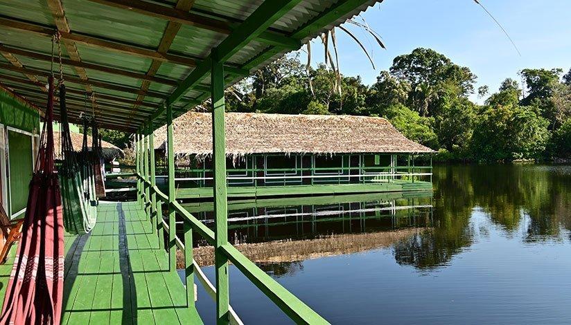 Här kan du slappna av i hängmattan på Amazon Lodge