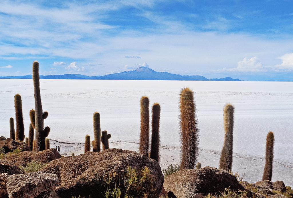 Utsikt över Bolivas saltöken Salar de Uyuni
